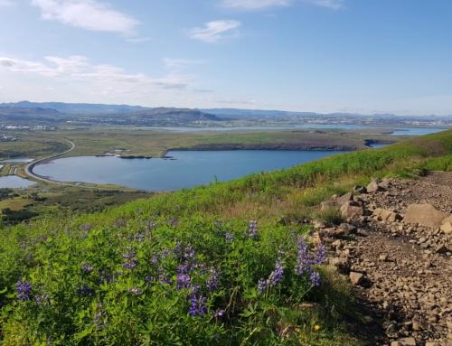 Hiking in Reykjavik – Mount Esja